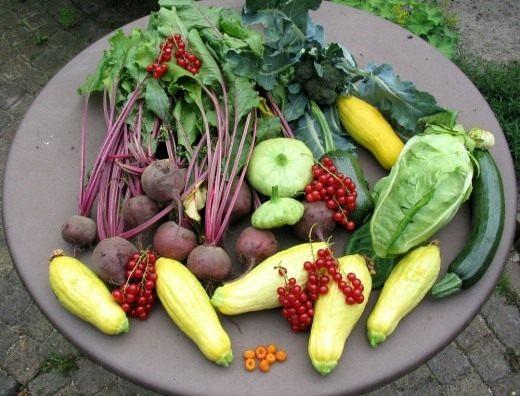 Летний урожай