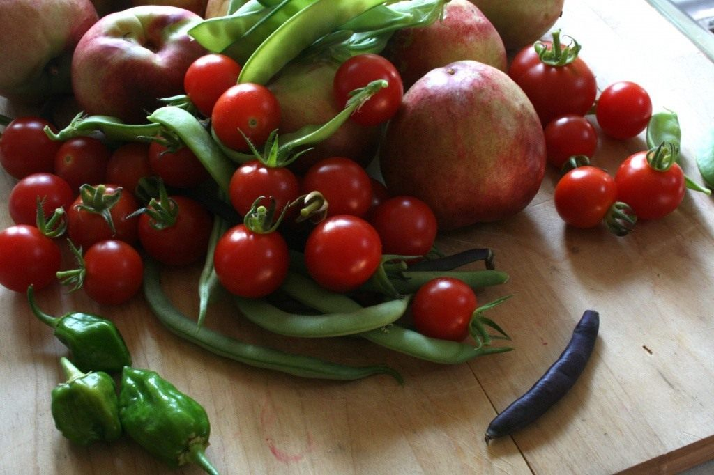 Срывать, срезать, отщипывать? Как правильно собирать урожай