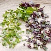 Разложите зелень на ткань