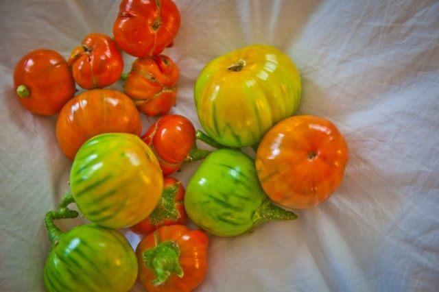 Мини-баклажаны «Турецкий Оранжевый»