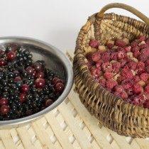 Переберем и вымоем ягоды