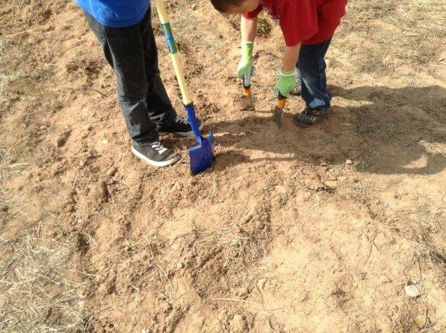 Песчаная почва