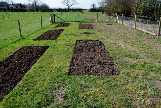Очищаем огород от растительных остатков