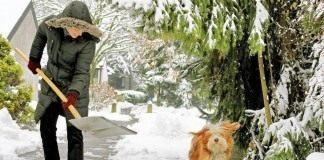 Уборка снега на участке