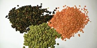 Чечевица чёрная, красная и зелёная