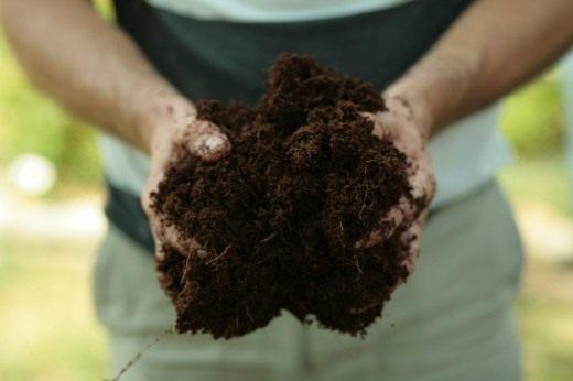Субстрат из кокосового волокна так же поможет улучшить структуру почвы