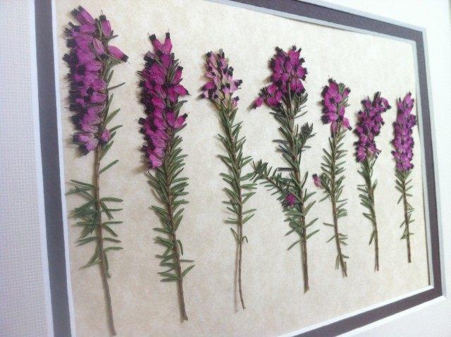 Декоративный гербарий из вереска