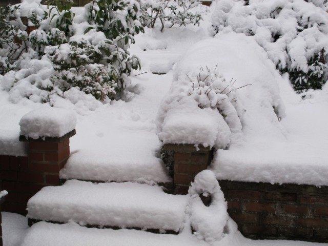 Очищайте дорожки от снега и наледи