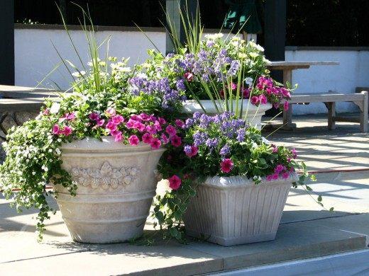 Цветочные композиции в вазонах