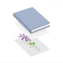 Уложите растение между двумя листами бумаги и прижмите книгой