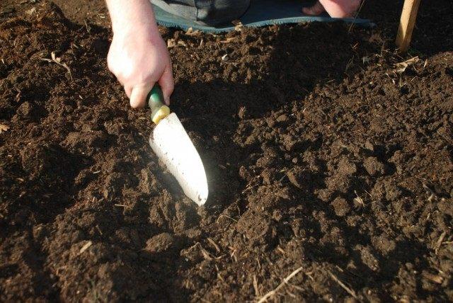 Заготовкой компонентов для почвосмесей лучше заняться с осени