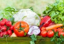 Советы начинающим: основные овощные культуры и севооборот