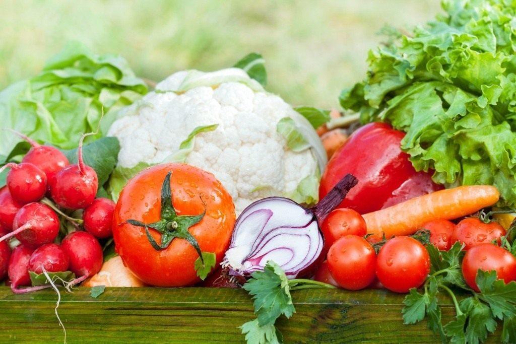 Лучшие сорта помидоров для средней полосы России