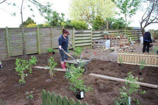 Спланируйте будущий сад так, что бы растения не мешали друг другу и не загораживали свет