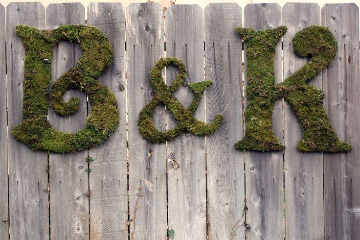 Moss-05