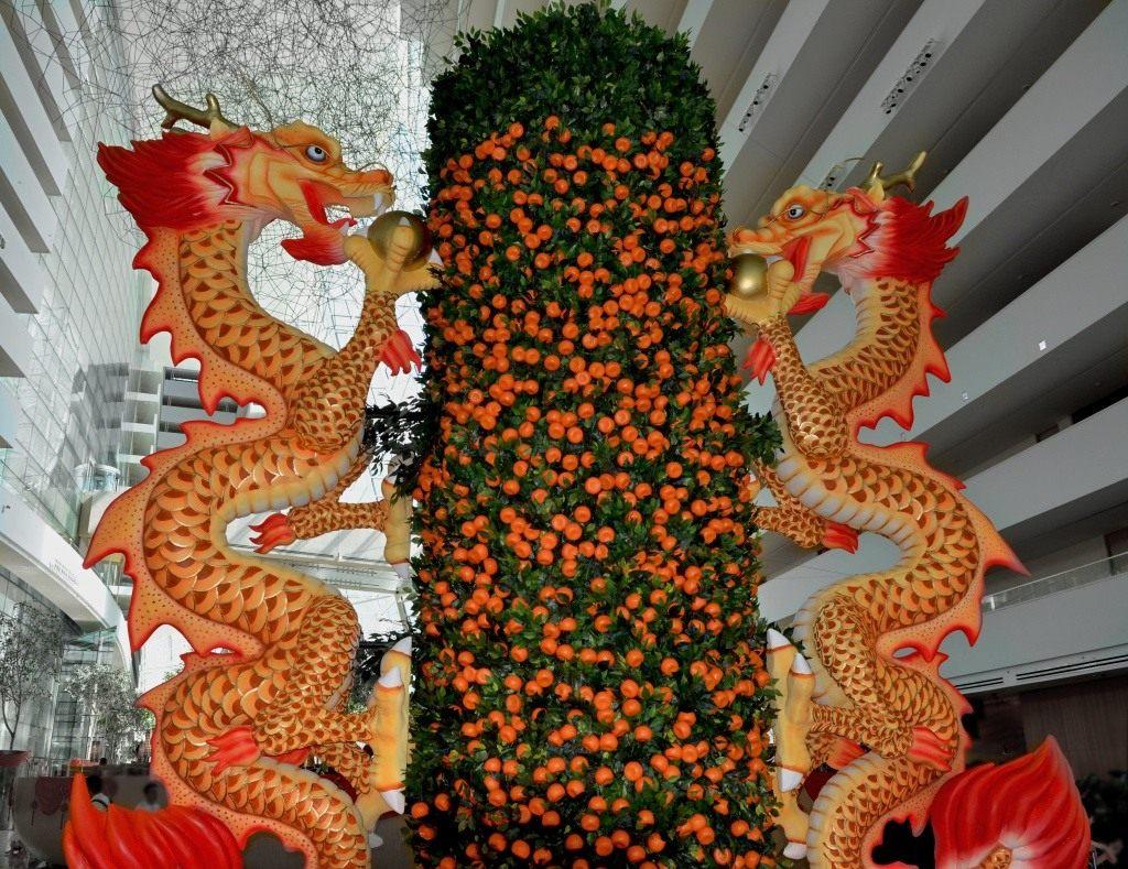 mandarin-trees-04