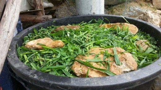 В домашних условиях самостоятельно готовят домашние биопрепараты в виде заквасок