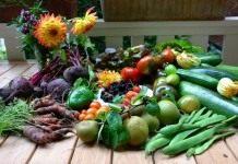 ЭМ-препараты в органическом овощеводстве