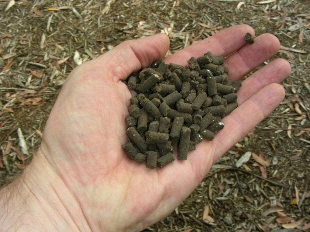 ЭМ-технологии успешно используются в органическом земледелии