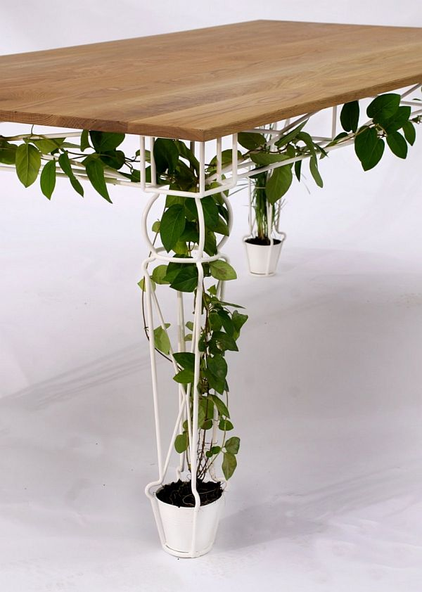 Eco-Table-2