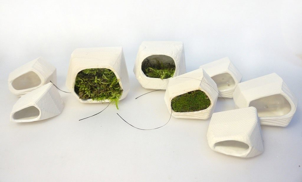 Moss-system2