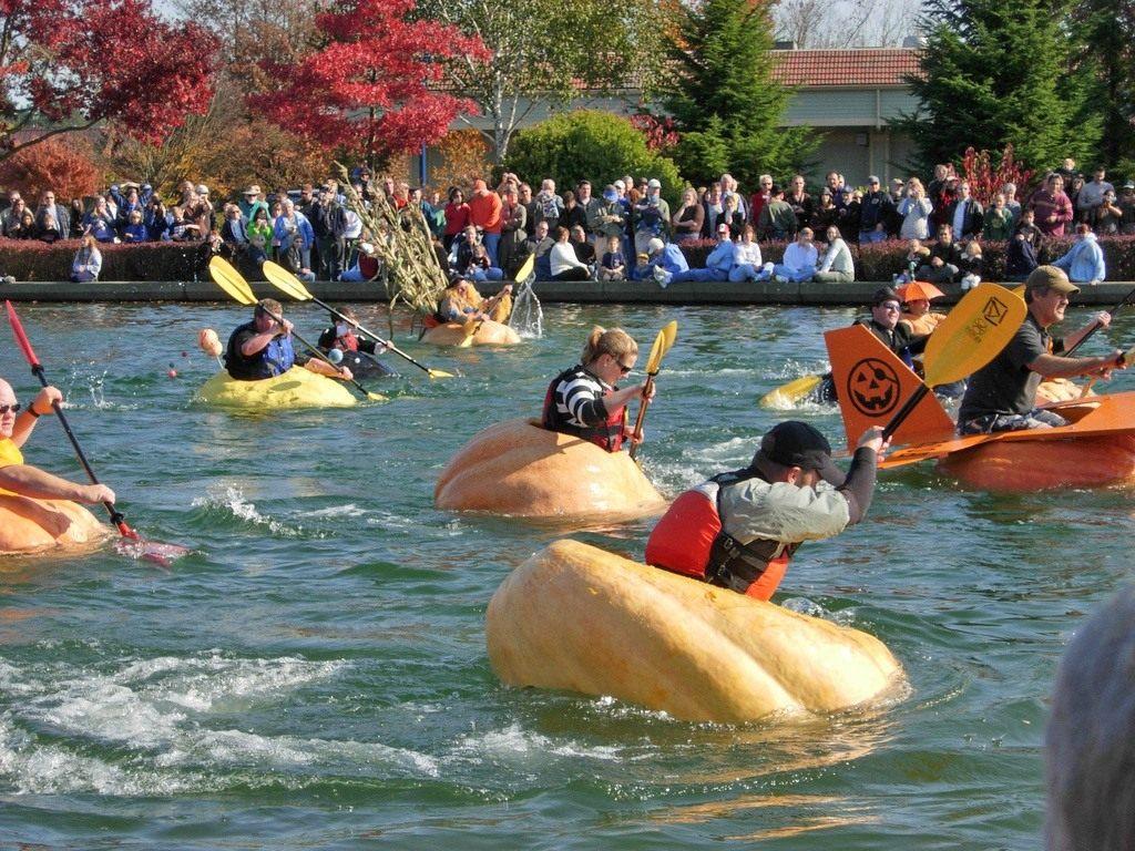 Pumpkin-race1
