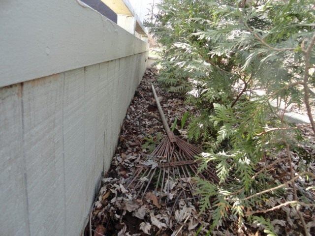 В апреле начинаем проводить очистку цветников и палисадников от оставшегося мусора