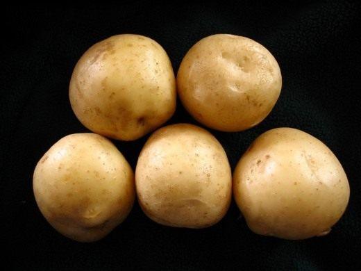 Получение высокого урожая отменного качества зависит от предназначения картофеля. Для каждого вида готового продукта выведены свои сорта. Семенной картофель