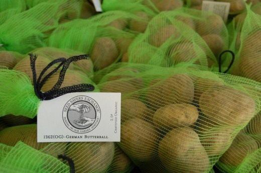 При покупке семенного картофеля необходимо придерживаться нескольких правил. Одно из них — не покупать материал у случайных продавцов. Фасованный семенной картофель