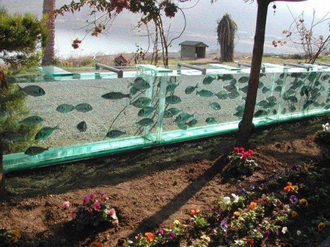 aquarium-fence-010