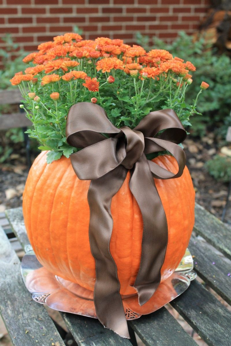 pumpkin-flower-pots-02
