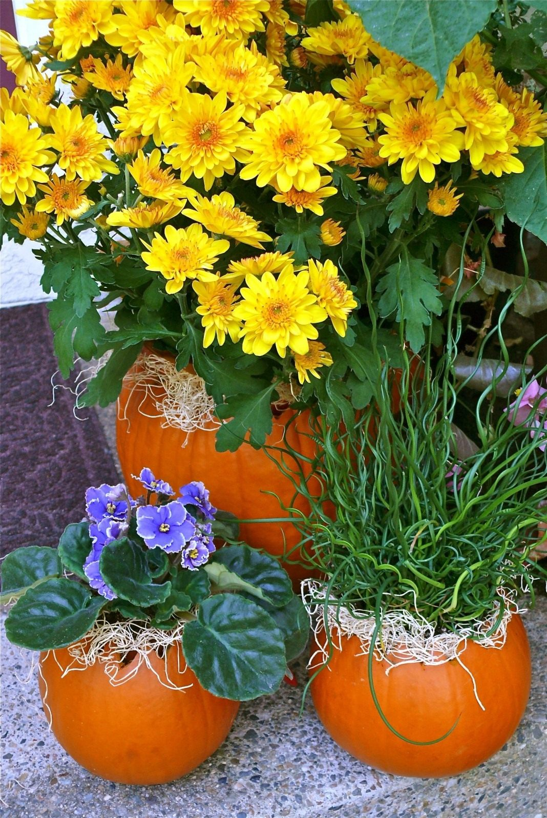 pumpkin-flower-pots-03