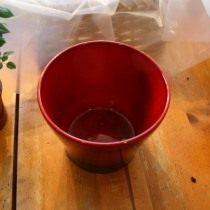 В дне горшка проделайте отверстия для стока воды