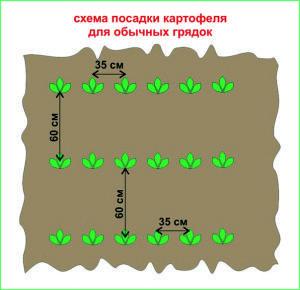 bezymjannyj-14