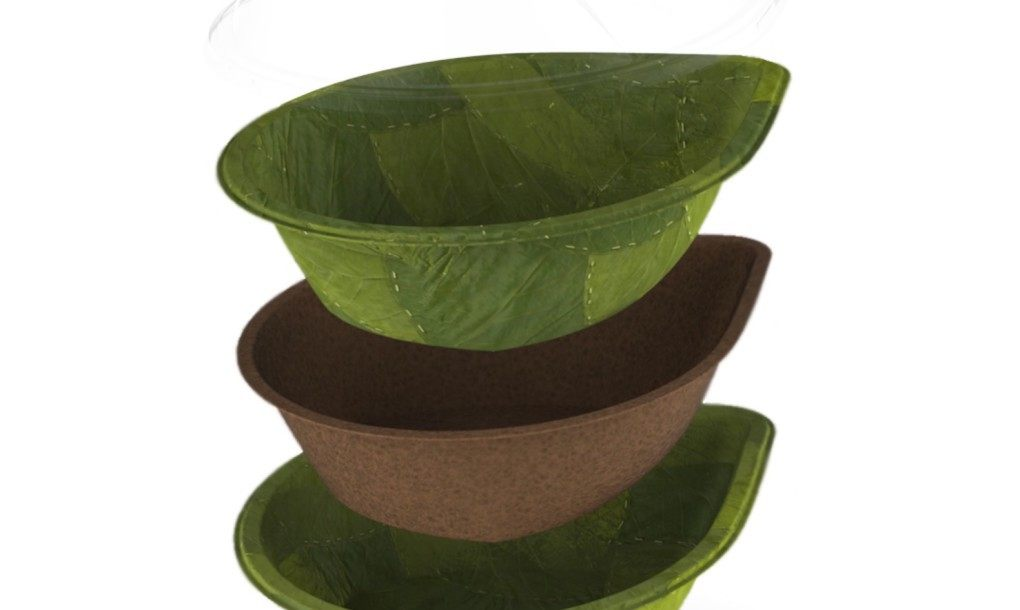 1leaf-bowls-by-Leaf-Republic-2-1020×610