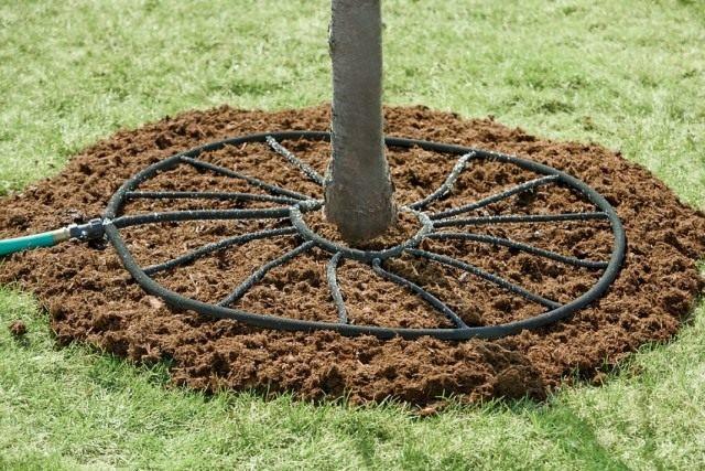 Система полива садовых деревьев
