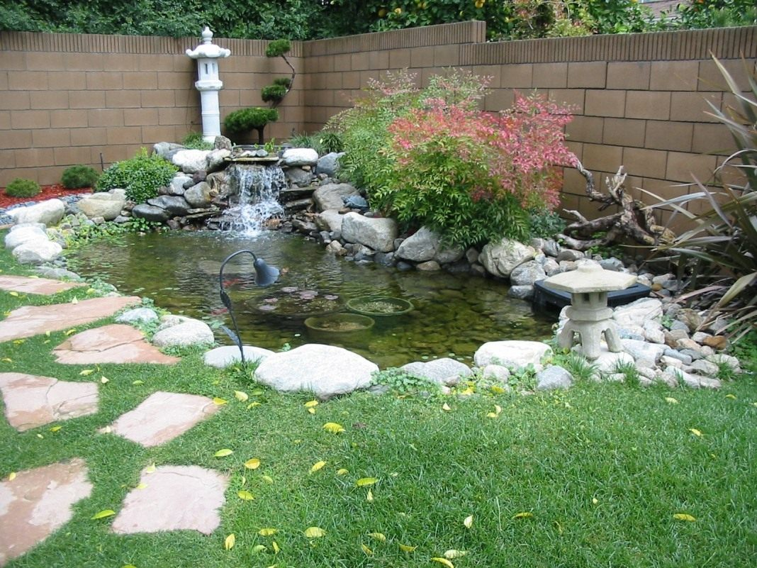 small-garden-pond