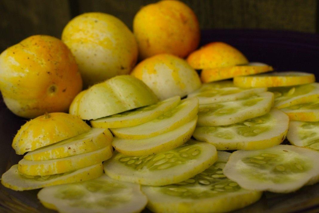 лимон действительно сжигает жиры