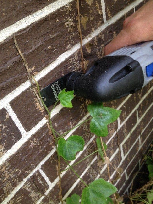 Очистка стены дома от остатков растения