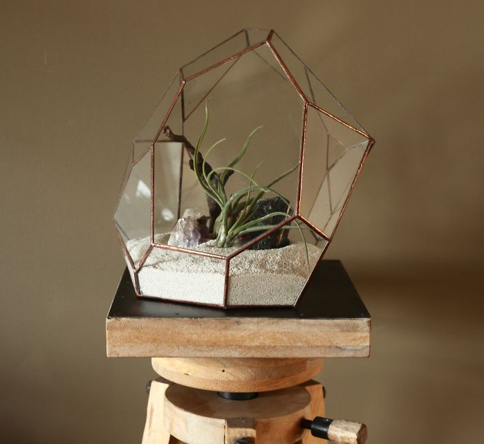 Terrariums-Reimagined-04