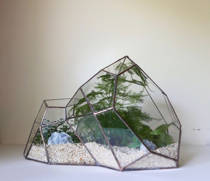 Terrariums-Reimagined-06
