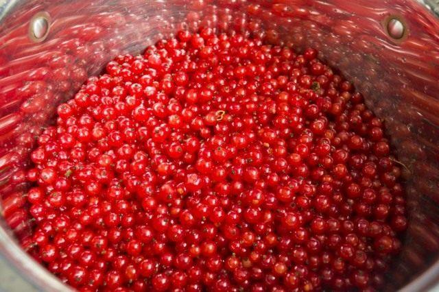 Чистую ягоду выкладываем в кастрюлю