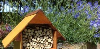 Отель для жуков — садовый домик для полезных насекомых