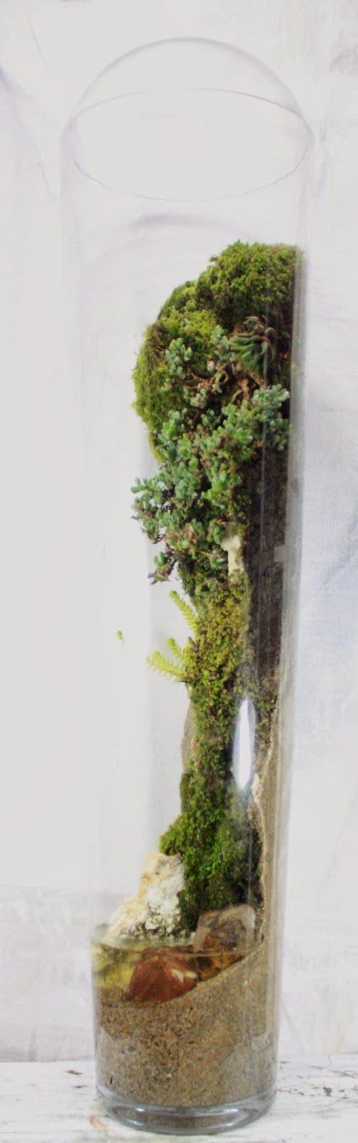 florarium-3