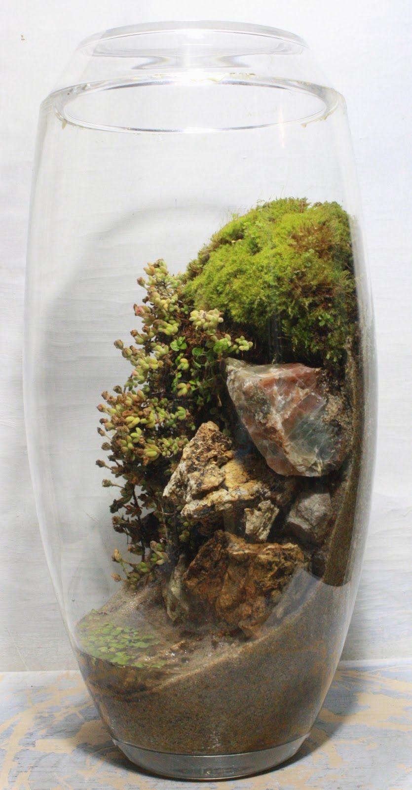 florarium-4