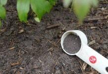 Аптечка для почвы, или Как правильно выбирать удобрения?