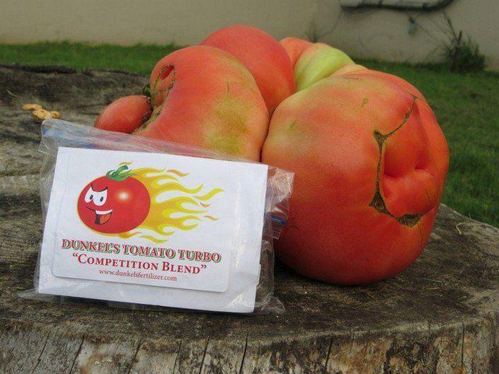 big-tomato1