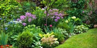Некоторые из выращиваемых растений могут быть, в той или иной мере, опасны для здоровья