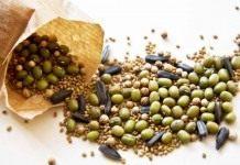 Как правильно собрать и сохранить семена овощей?