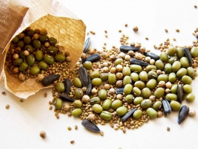 Собранные семена овощей